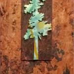 4. Anne Thornton - lone pine